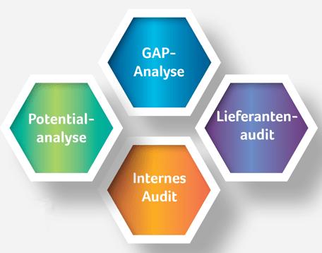 Dienstleisungen: GAP-Analyse   Potentialanalyse   Lieferantenaudit   Internes Audit
